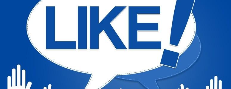 Chiffres-clés et tendances sur les réseaux sociaux en 2013 : Facebook continue de dominer !