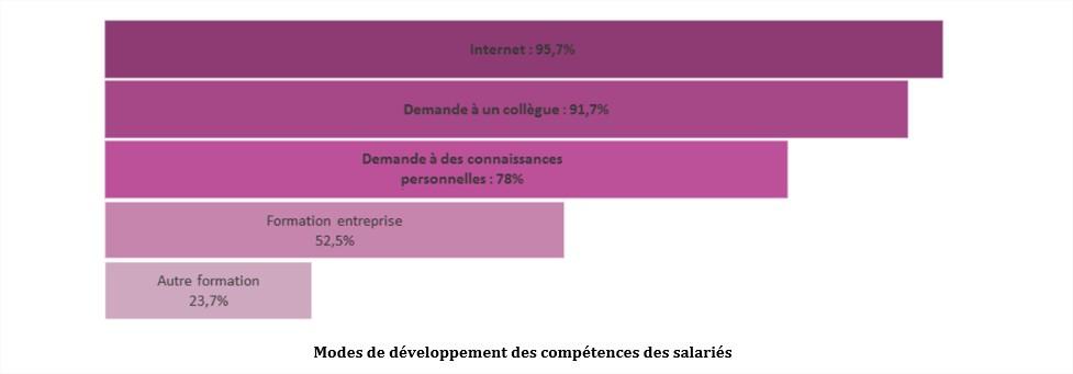 Numérique et évolution des compétences des salariés.pdf - Mozilla Firefox