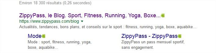 zippypass blog - Recherche Google - Mozilla Firefox