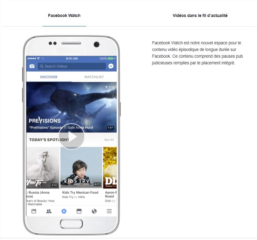 Publicités vidéo intégrées sur Facebook  Facebook Business - Google Chrome