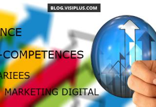 L'emploi de Responsable/Chargé(e) de marketing digital : poste multifonctions par excellence ?