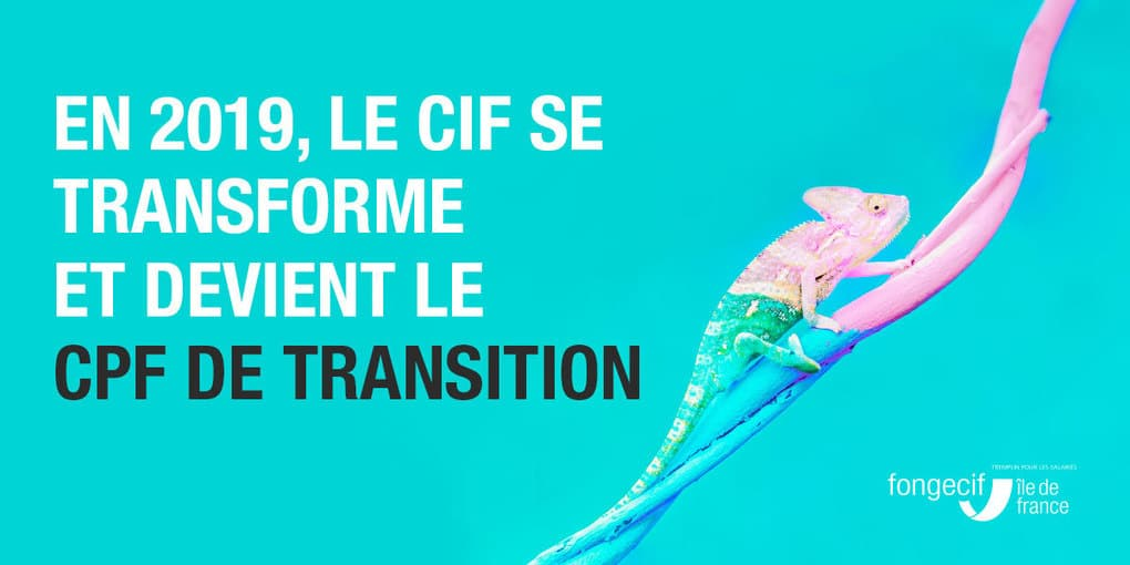 cpfdetransition2019