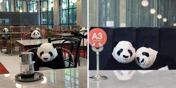 Les pandas en peluche de la Maison Saigon, où l'art de dédramatiser la distanciation physique pour amuser et rassurer les clients.