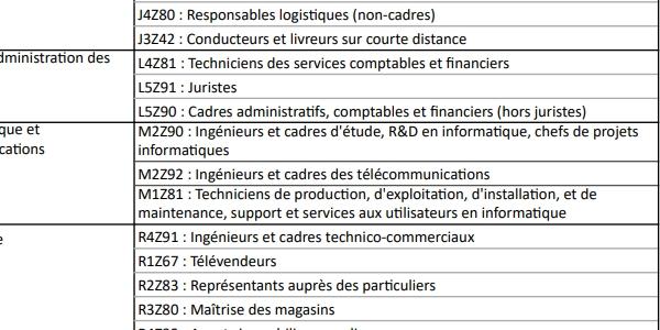Transco : des métiers du digital sont déjà présents sur la liste publiée par la Direccte de l'Occitanie.